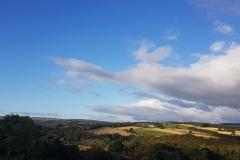landscape2-1500x729