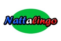 nattalingo-logo-image