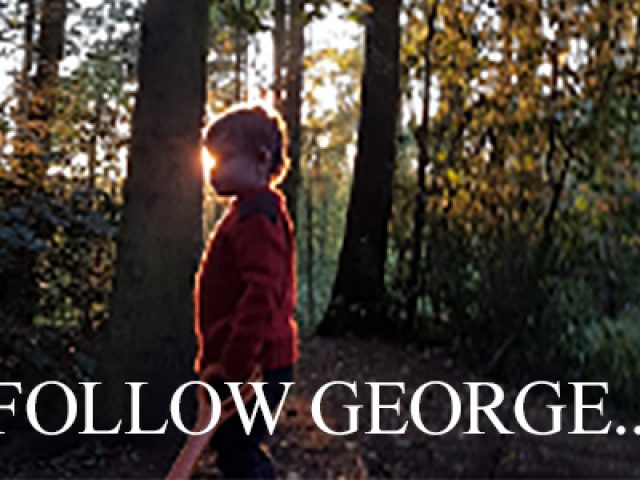 Follow George
